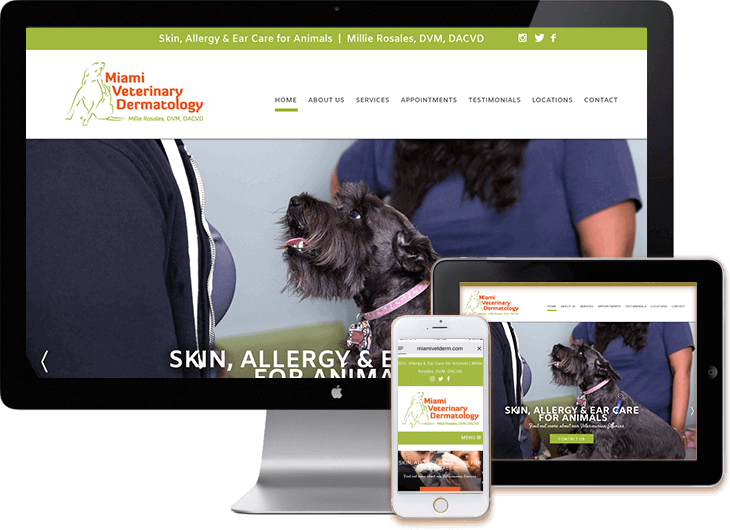 Miami Veterinary WordPress Design