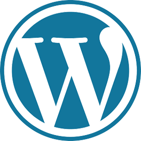 WordPress Developer Miami