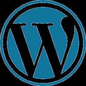 WordPress Developer Miami