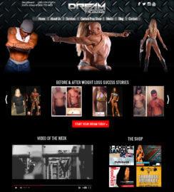 WordPress Themes Miami Fitness WordPress Web Sites