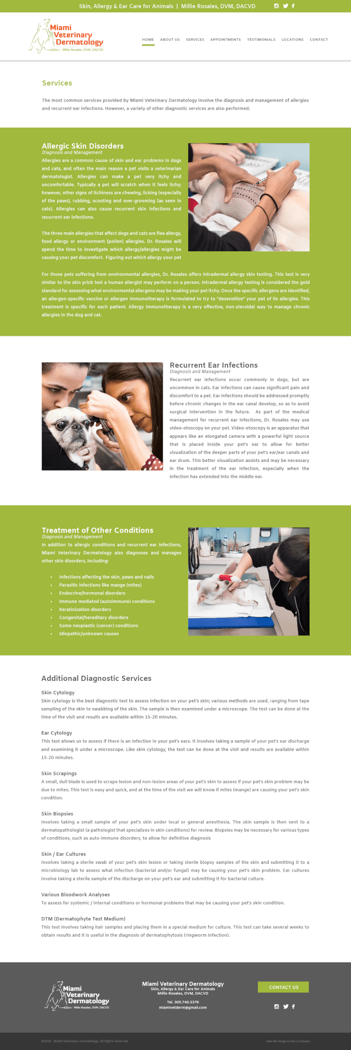 Veterinarian Web Design Miami
