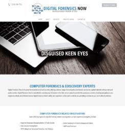 WordPress business web design