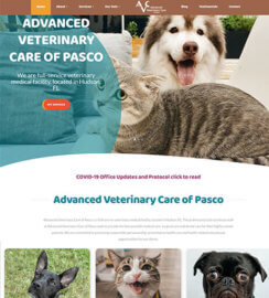 Veterinarian Web Design WordPress