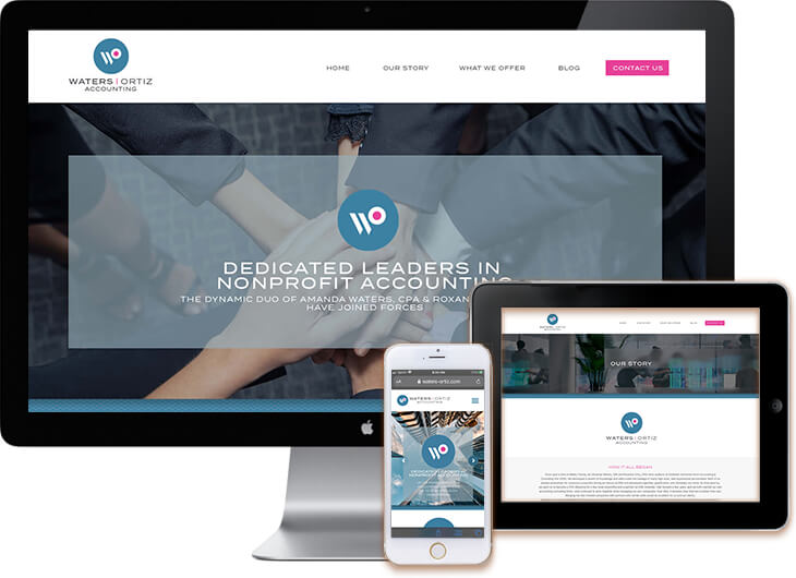 Accounting Company Web Design 2